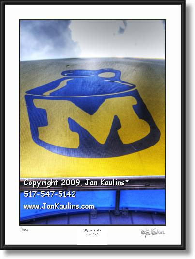 Brown Jug Ann Arbor Bar Restaurant photo print